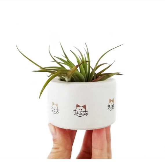 Mini Cat Planter/Air Plant Holder/Cat decor/Cat lover gift/Pet lover gift/kitty/concrete planter/tea light/Ring Holder/concrete planter