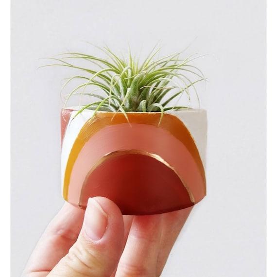 Concrete Air Plant Holder,Votive Vessel, Modern planter, Cactus Planter,Air Plant,Ring Dish,Desk Planter,Rainbow,Mini Planter, fall decor