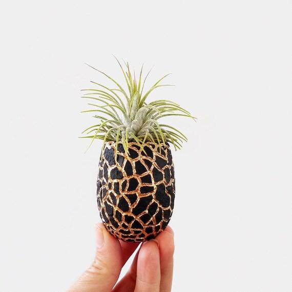 Concrete Planter/Modern Planter/Mini Planter/Pineapple Planter/Indoor Planter/Succulent planter/Pineapple decor/pineapple/Air plant/planter