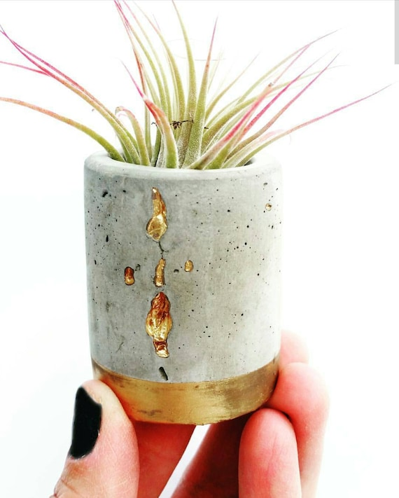 Concrete Gold Filigree Planter,Air Plant Holder, Modern Metallic planter,Succulent Planter, Indoor Planter, Desk planter, Mini Planter