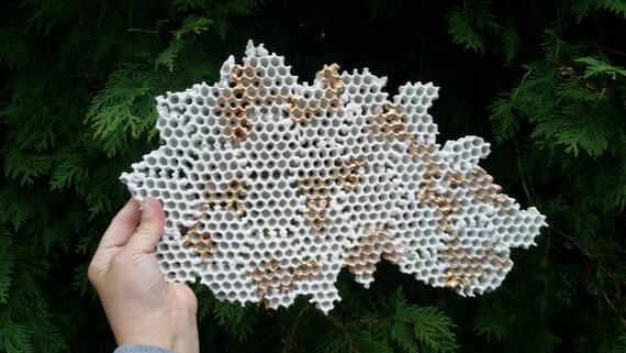 Concrete Honeycomb Wall Art/Honeycomb decor/Industrial design/Concrete Art/Honeycomb/Modern wall art/3d wall art/wall hanging