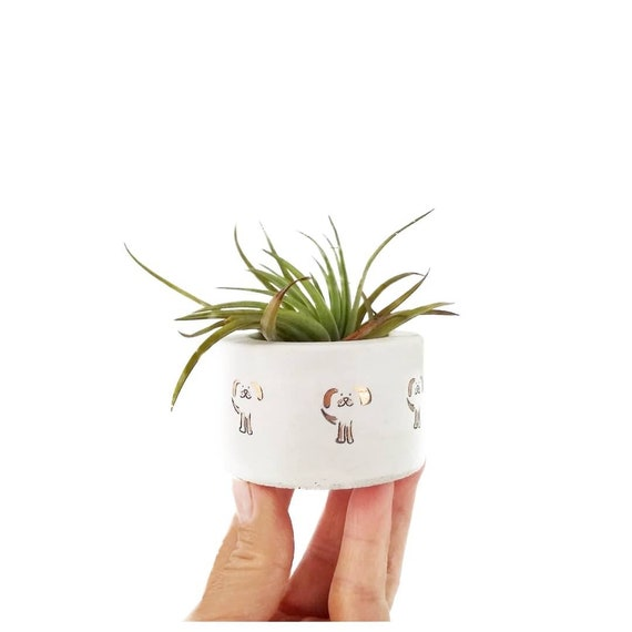 Mini Dog Planter/Air Plant Holder/Dog decor/Dog lover gift/Pet lover gift/puppy/concrete planter/tea light/Ring Holder/concrete planter