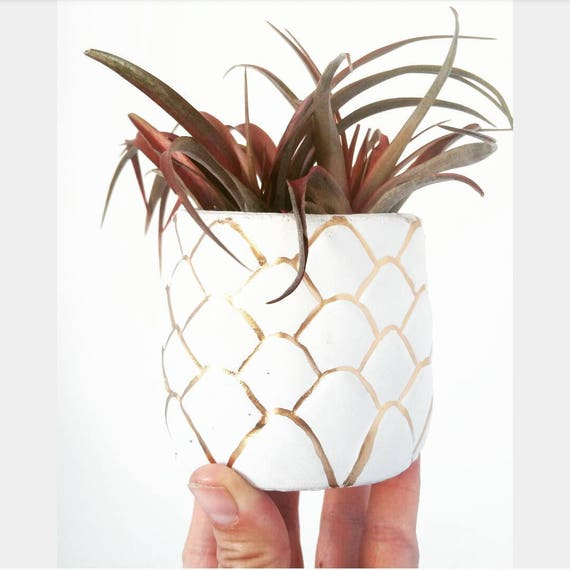 Pineapple Planter/Air Plant Holder/Pineapple decor/New Home Gift/Housewarming Gift/Pineapple Lover/Succulent Planter/Modern Planter