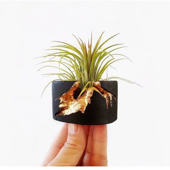 Black Concrete Air Plant Holder,Modern planter,Cactus Planter,Air Plant,Ring Dish,Desk Planter, candle holder, Metallic planter,Mini Planter