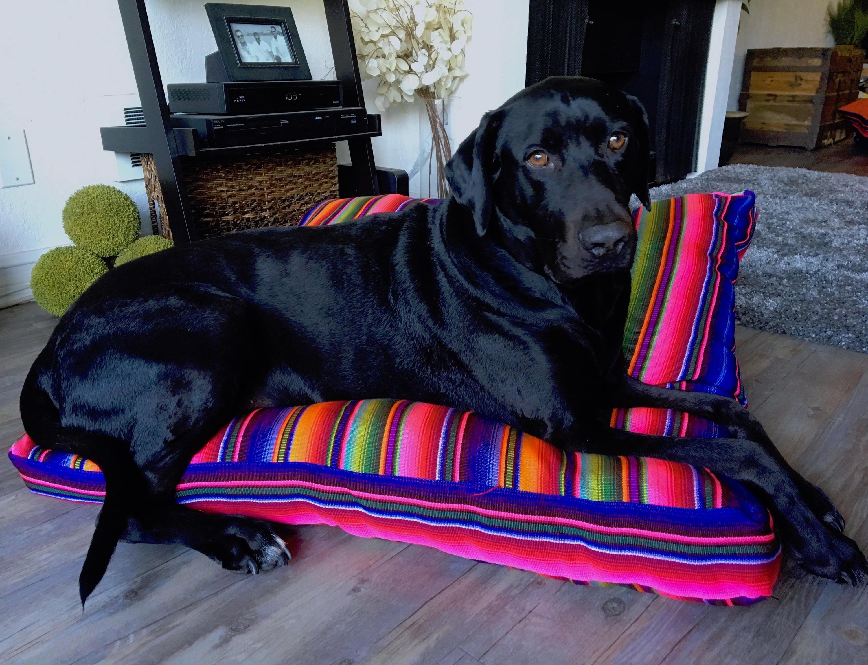 Guatemaltekischen Hund-Bett-Decke Boden Kissen Kissen Box