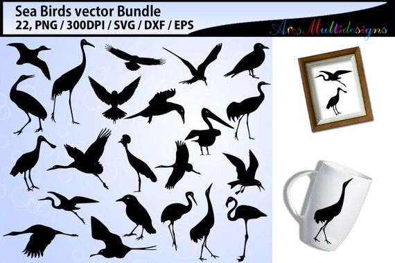 image about Bird Silhouette Printable named Sea birds svg silhouette package deal / sea birds silhouette SVG