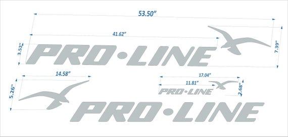 "FREE FAST delivery DHL express PRO LINE boats Emblem 53/"" black"