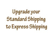 Custom Listing for Upgrading your Standard Shipping to Express Delivery