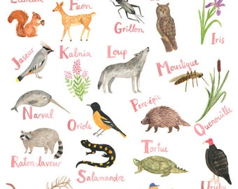Alphabet on the flora and fauna of America from the North (Quebec and Canada)