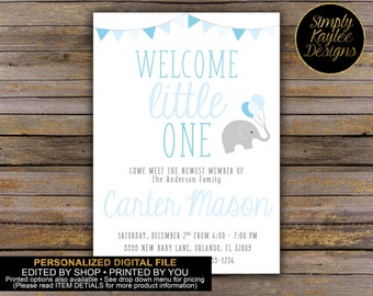 Welcome Little One Baby Viewing Party Invitation