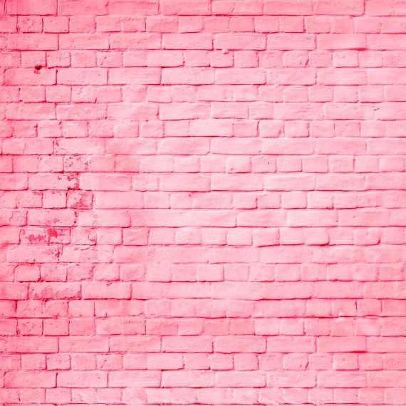 Pink Brick Backdrop Colored Pink Brick Wall Printed