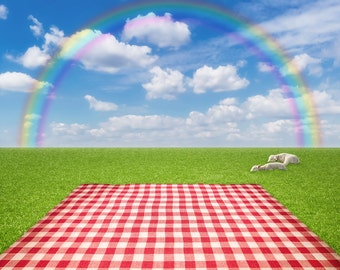 Rainbow Backdrop - green grass land - Printed Fabric Photography Background G1426