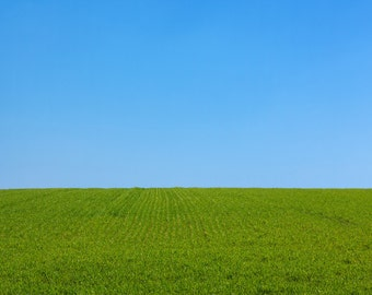 Green Grass Land Backdrop - blue sky, scenic - Printed Fabric Photography Background P0115