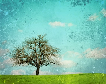 Grass land Backdrop - spring scenic backdrop - Printed Fabric Photography Background G1199