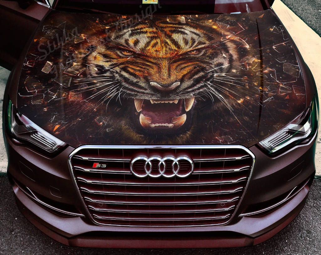 Vinyl car hood full color wrap graphics decal tiger beast grin nature animal sticker