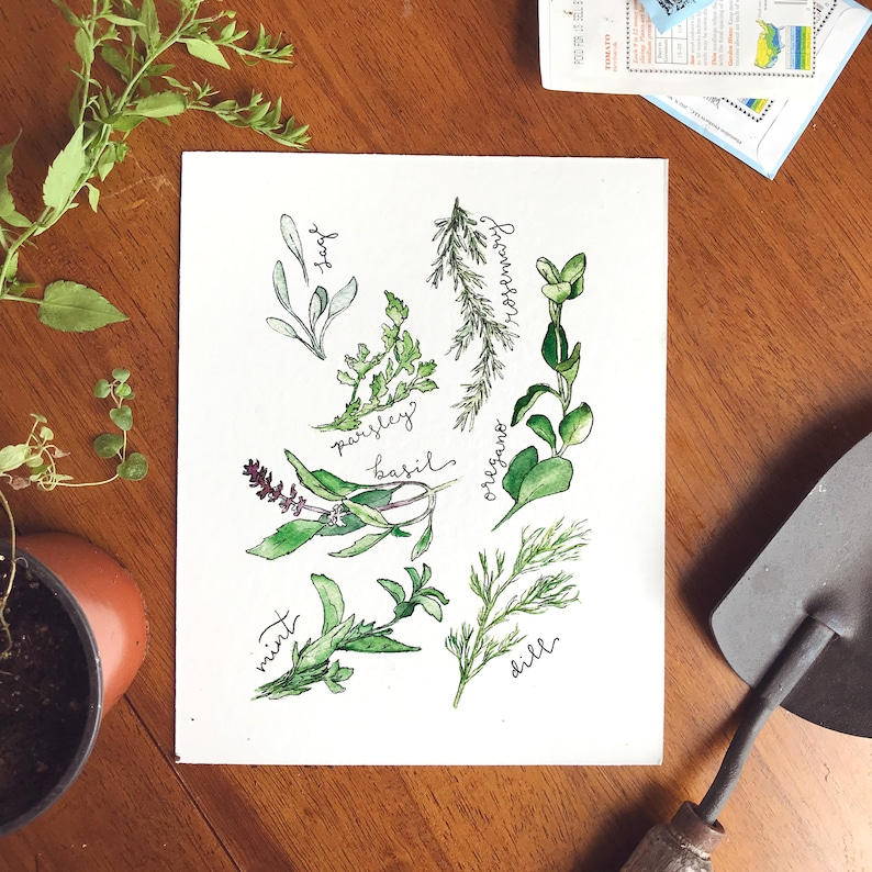 Kitchen Herbs Watercolor Print image 0