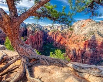 Angels Landing photo canvas – Zion National Park picture – Angels Landing souvenir – National Park canvas art – Zion hike – Utah travel gift