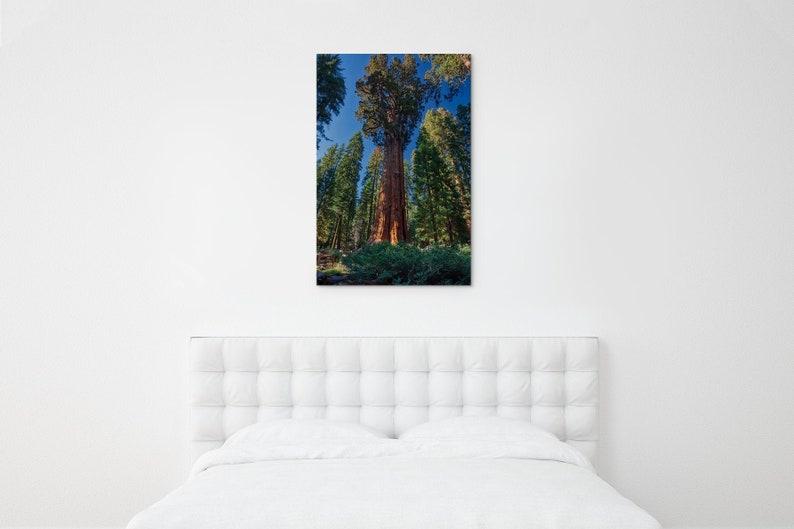 General Sherman Tree photo \u2013 Sequoia National Park photo \u2013 World\u2019s largest tree picture \u2013 National Park canvas \u2013 California travel gift