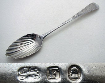 Antique George III (1801) Solid Sterling Silver Tea Spoon, Bright-Cut Engraving, Shell Bowl, 19th-Century English Georgian Hallmarked.