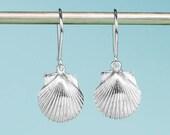 Silver Bay Scallop Earrin...