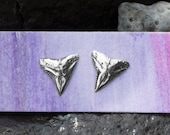 Bull Shark Tooth Stud Ear...