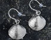 Silver Clam Shell Earring...