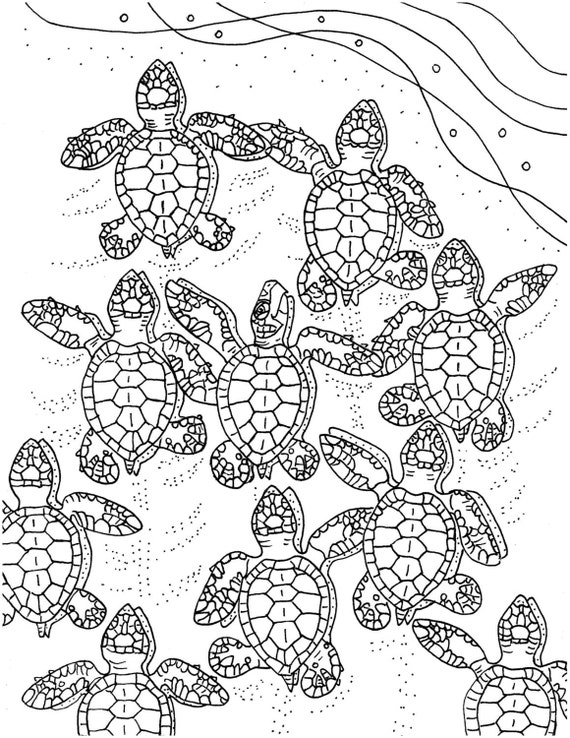 Baby Sea Turtles coloring page embroidery pattern sea | Etsy