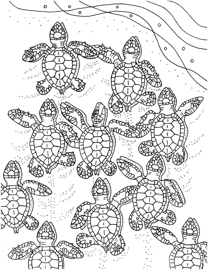 Baby Sea Turtles Coloring Page Embroidery Pattern Sea Etsy
