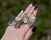 Beautiful Butterfly Earrings real insect electroformed with metal