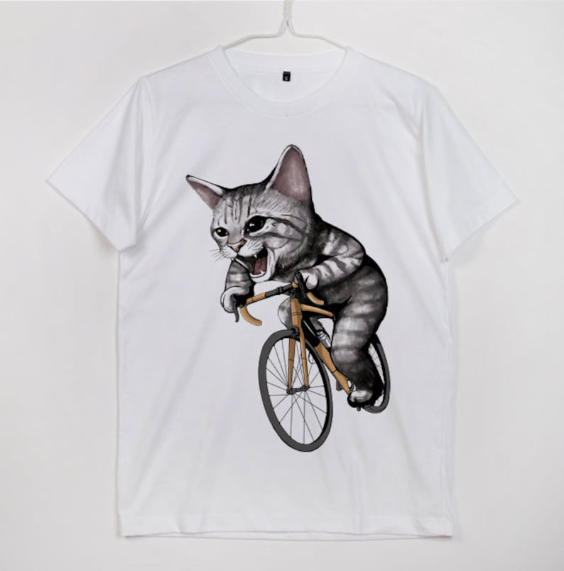 Kitten Cat Ride Bike Bicycle Cat Love Cycling Felis catus  3f0a15fa1