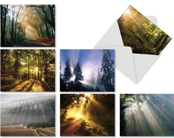Beautiful Sun Shining Through Sympathy Cards (Box of 10) - Bulk Landscape Note Cards with Envelopes (4 x 5.12 Inch) AM1735SMG-B1x10