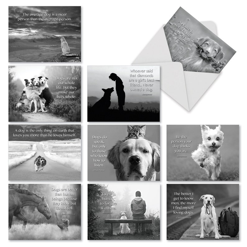 M1623BN Canine Comments: 10 Assorted Blank All-Occasion Note image 0
