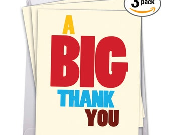 J9689TYG3 Jumbo Pack of 3 Humorous Thank You Cards with Envelopes