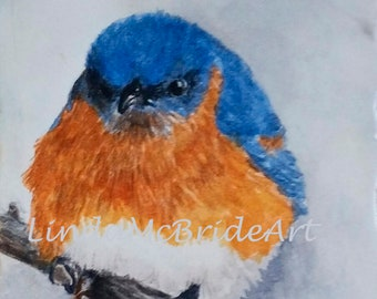 Eastern bluebird 5x7 blank notecard reproduced from my original painting