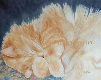 Sleeping Prince, sleeping cat 5x7 blank notecard with envelope