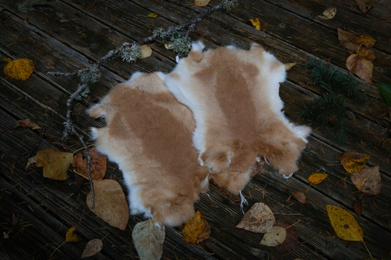 Real Fur Rabbit Pelt, White Beige Natural Cruelty Free, Taxidermy Leather, Viking, Norse