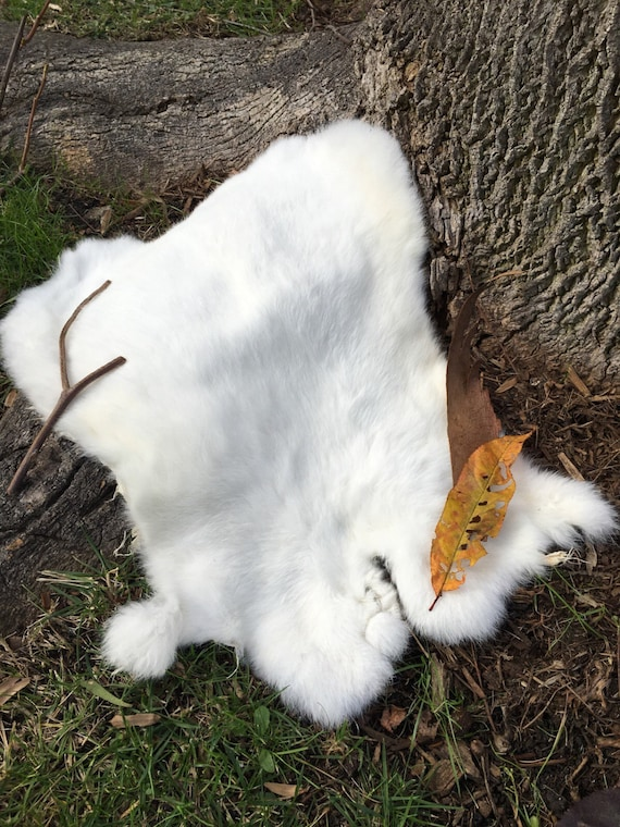 Real Fur Rabbit Pelt, White Natural Cruelty Free, Undyed Taxidermy, Leather, Viking, Norse