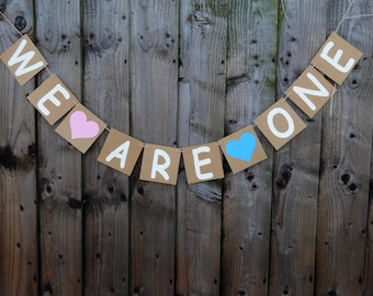 Twins birthday, we are one bunting, twins 1st birthday party decor, cake smash photo backdrop
