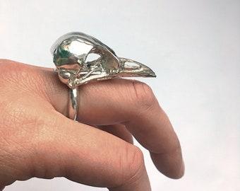 Large bird skull ring