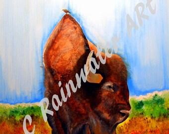 "Acylic   painting ""The Buffalo Bird' Digital Download"