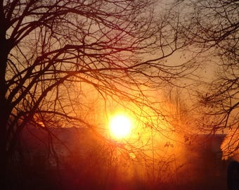 Early Morning Sun, Nature Photography
