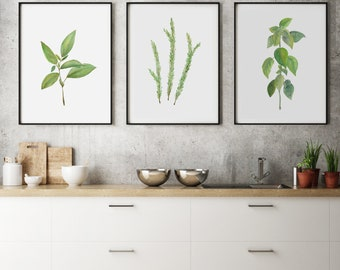 Herbs- Set of 3 (18x24)