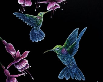 "11×14 Signed Archival print of ""airbrushed Hummingbirds"""