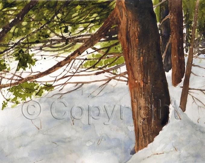 No 14, Greeting Card, watercolor, watercolor