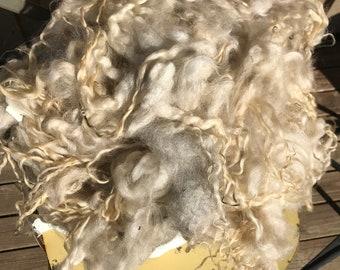 Grey lamb fleece (643 grams)