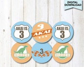 Personalized Radiator Springs Cupcake Toppers