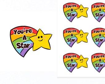 You're A Star Stickers |Teacher Reward Stickers | Teacher Stickers | Reward Stickers