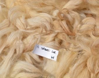 Schoonebeker raw fleece.  Part semi intact/ part loose. 2.16kg/ 4.76lbs