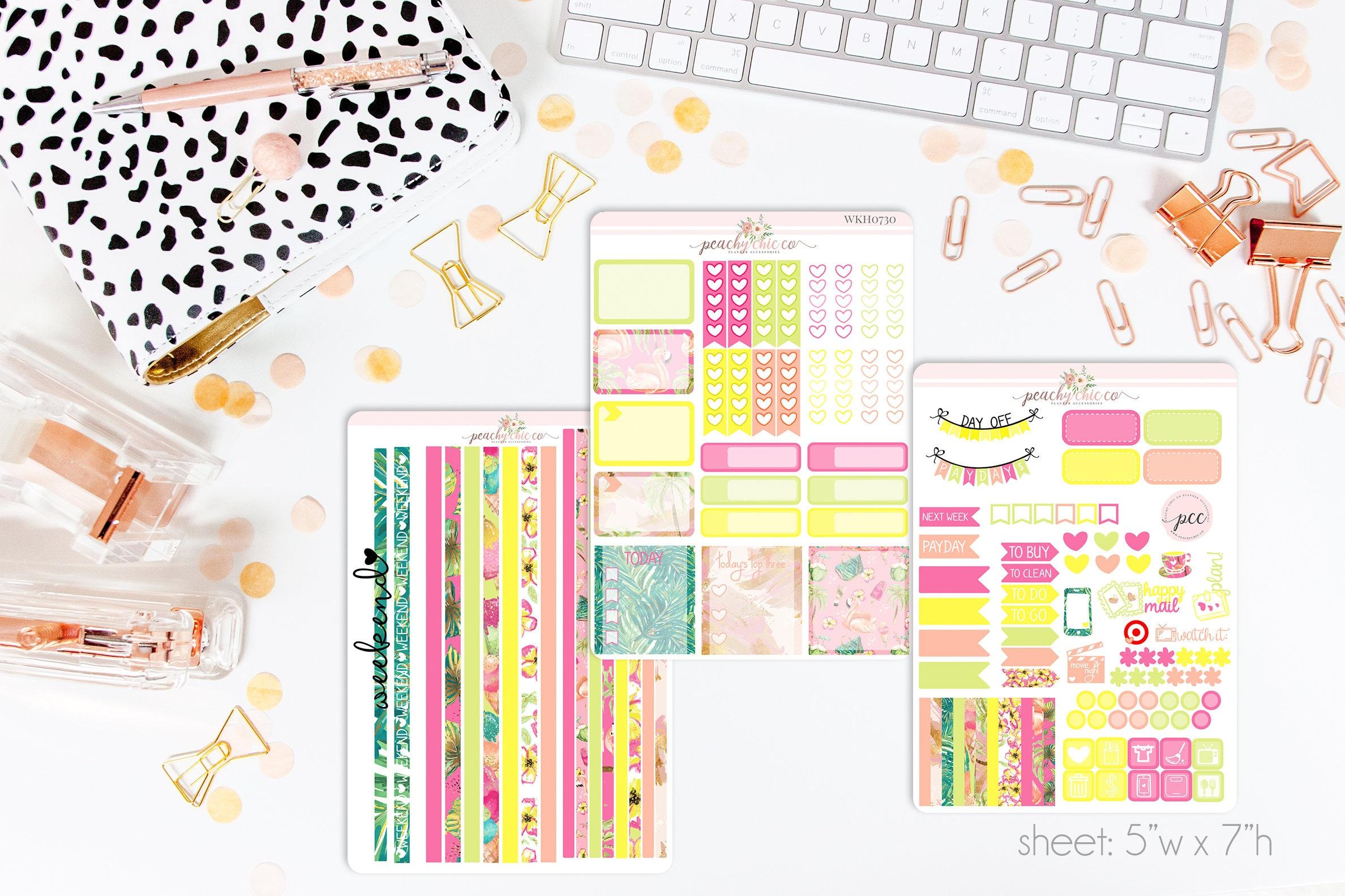 Planificador semanal Kit bastante horizontal Pegatinas Erin Condren planificadores portátil