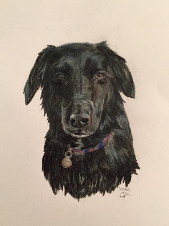 Negro Perro Dibujo A Lápiz De Color Etsy